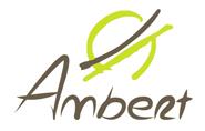 Mairie d'Ambert