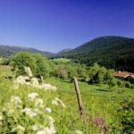 Les paysages du Livradois-Forez