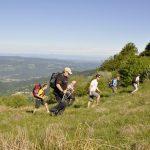 Randonnées sur les Hautes-Chaumes